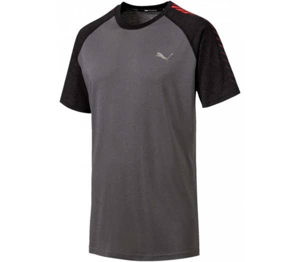 PUMA Collective Raglan Tee Herren Trainingsshirt - 1
