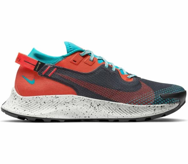 NIKE Pegasus Trail 2 GORE-TEX Men Trailrunning-Shoe - 1