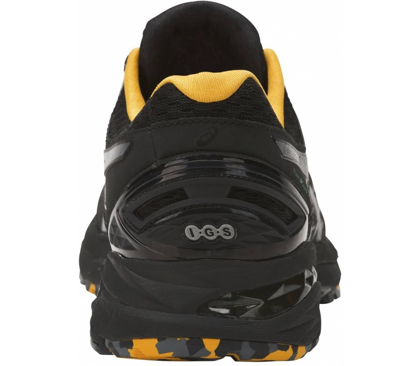 c53da5f9 ASICS GT-2000 5 Trail PlasmaGuard Men black