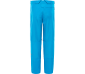 The North Face - Powderflo Herren Skihose (blau)