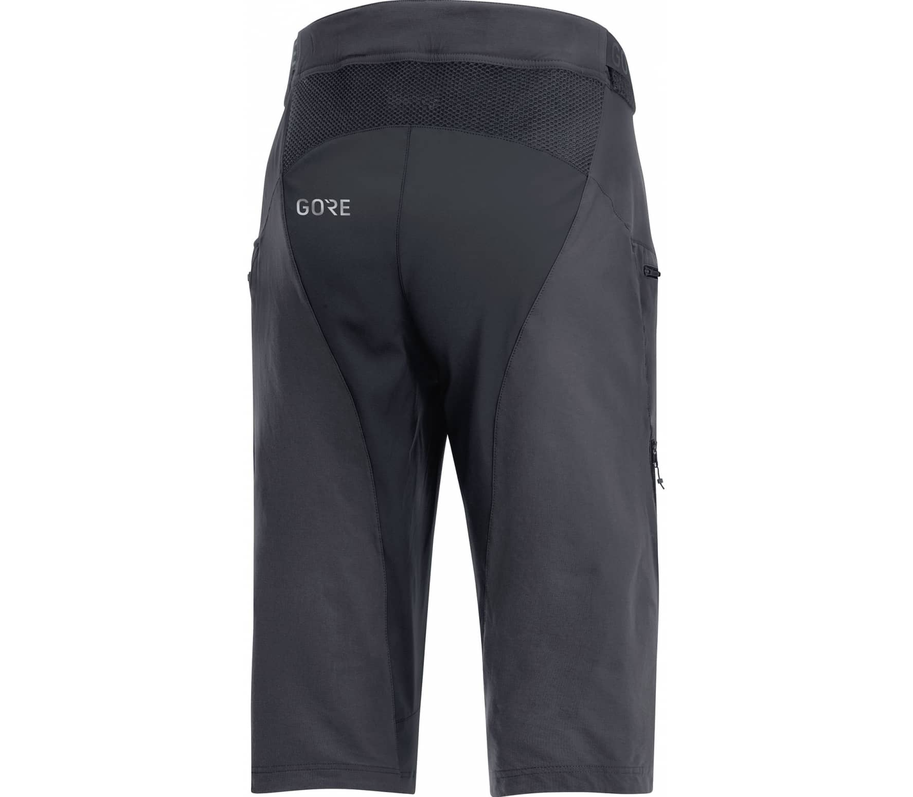 GORE® Wear C5 All Mountain Herren silber