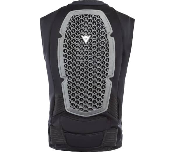 DAINESE Armor Men Back Protector - 1
