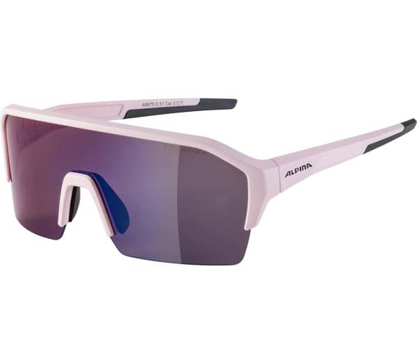 ALPINA RAM HR HM+ Sunglasses - 1