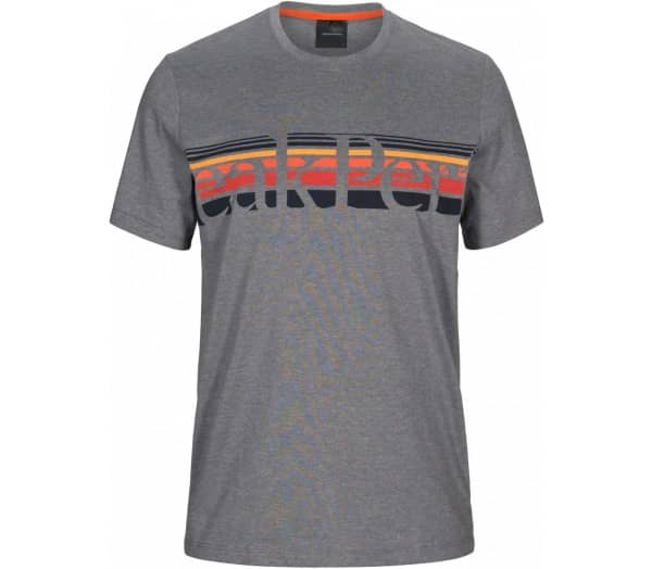 PEAK PERFORMANCE Explore Tee Stripe Print Herren T-Shirt - 1