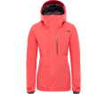 The North Face Descendit Damen